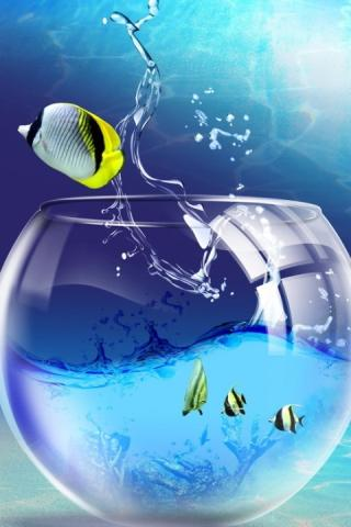 Скачать 3D аквариум живые обои HD / 3D aquarium live wallpaper HD для Андроид