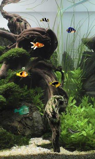 Скачать Аквариум 3д живые обои / Aquarium Free Live Wallpaper для Андроид