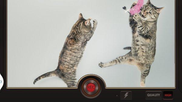 Скачать Эффект замедленной съёмки для Андроид