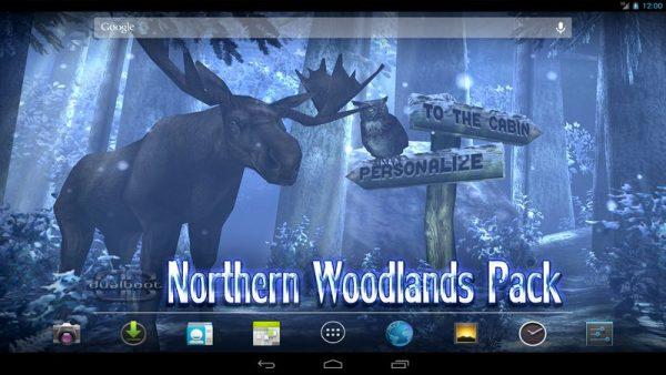 Скачать Forest HD для Андроид