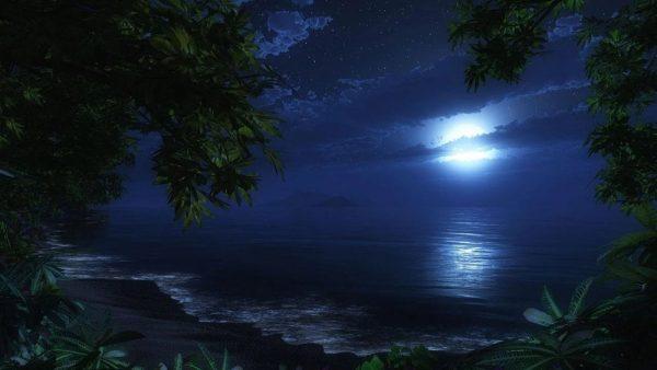 Скачать Moon Light для Андроид