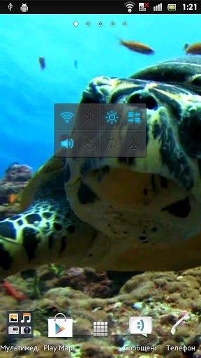 Морская черепаха Живые обои / Sea Turtle Live Wallpaper для Андроид