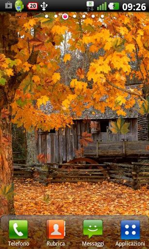 Скачать Осень живые обои / Autumn LWP для Андроид
