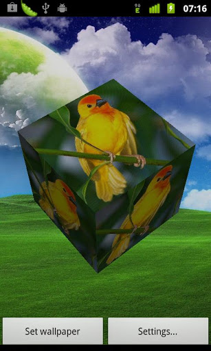 Скачать Птицы 3D Live Wallpaper / 3D Birds LWP для Андроид