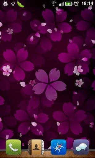 Скачать Sakura Falling Live Wallpaper для Андроид