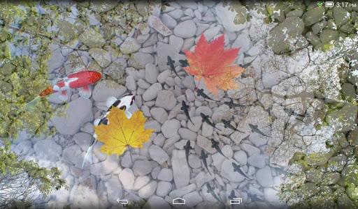 Скачать Живые обои с Кои в пруду для Андроид