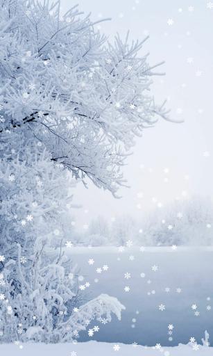 Скачать Зима обои для Андроид