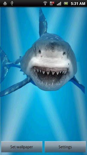 Скачать Злой акулы трещины экрана / Angry Shark Cracked Screen для Андроид